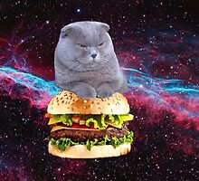 cat in space on a hamburger by cheesetortilla