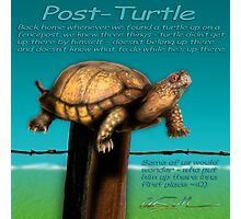 Post Turtle Photographic Print