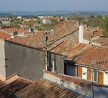Arles Rooftops by pluspixels