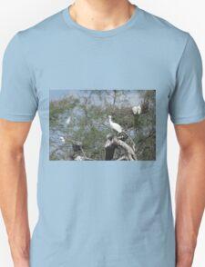 Little Egrets T-Shirt