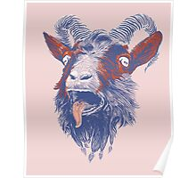 Rock Goat Poster