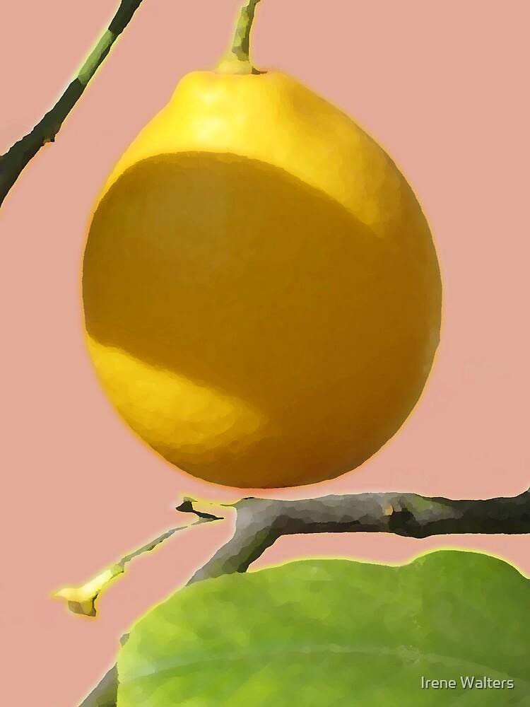 Lemon Tree by Irene Walters