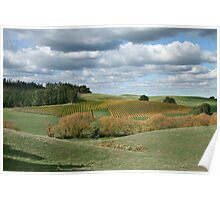 Autumnal Country Colours - Adelaide Hills Poster