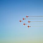 Roulettes by Bartt