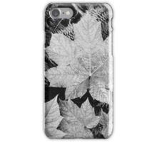Ansel Adams - Close-up of leaves In Glacier National Park (1942) iPhone Case/Skin