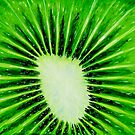 """Kiwi Explosion"" original pop art nature painting by Michael Arnold"