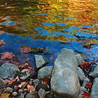 Autumn Water 2 by John  Goodman