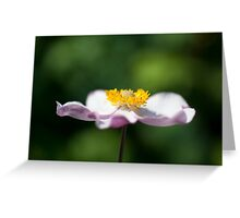 Flower - Side View Greeting Card