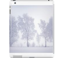 Ghostly Trees in Winter Mist iPad Case/Skin