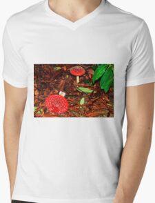 Fatal Attraction Mens V-Neck T-Shirt