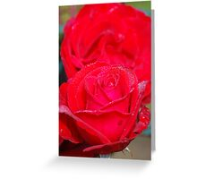frost on fall rose Greeting Card