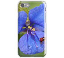 Spiderwort Tradescantia iPhone Case/Skin