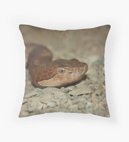 Trans Pecos Copperhead Throw Pillow