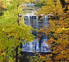 Ball's Falls by deb cole