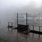 Mark Twain Showboat on the Dee River  by AnnDixon