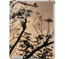Peaceful sunset iPad Case/Skin