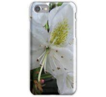 (2) Lillies White, Raindrop Wet  iPhone Case/Skin