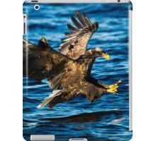 Sea Eagle Dives iPad Case/Skin