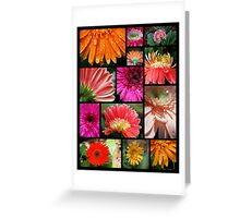 Gerbera Collection Greeting Card