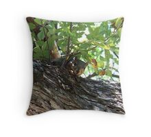 Can You See Me Now? Throw Pillow