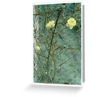 Mellow Yellow...... handcoloured silver gelatin photograph Greeting Card