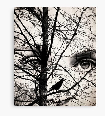 The eyes of the raven Canvas Print