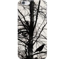 The eyes of the raven iPhone Case/Skin
