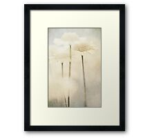 Summer Of Yellow Flowers Framed Print