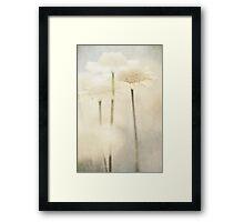 Summer Of Yellow Flowers Framed Print
