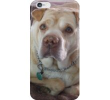 Well Posed Maxie iPhone Case/Skin