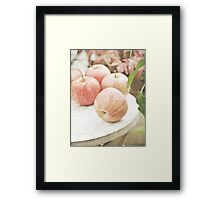 Garden apples Framed Print