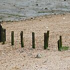 Wooden groynes at Bradwell beach by PaulMcGuinness