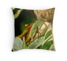 Only Eyes for You Throw Pillow