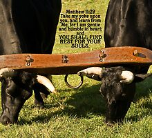 ~ Matthew 11:30 ~ For My yoke is easy, and My load is light ~ by Tim Denny