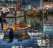 Safe Harbour by John Conway