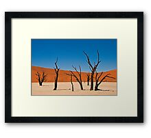 Deadvlei Framed Print