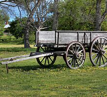 Wagon at The Briars by margotk