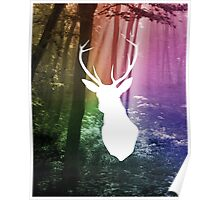 Forest Stag Colour Print Poster