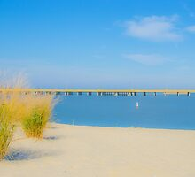 Stinky Beach - Ocean City, Maryland by JerryINOCMD