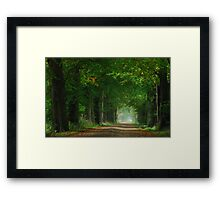 The first touch of autumn in laneland Framed Print
