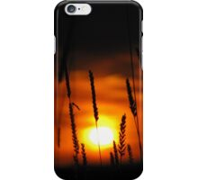 A Crimson Sky iPhone Case/Skin