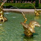 Palais het Loo fountain by Nancy Richard