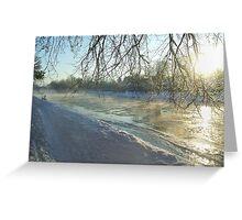 icy tweed Greeting Card