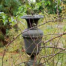 A choked Urn. by EileenLangsley