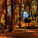 Fall Burst by Angela  Ardis