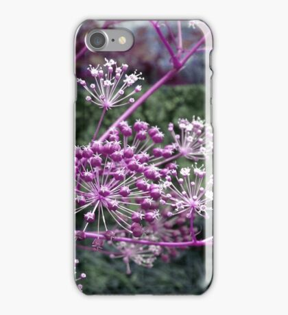 Purple Berries-Available As Art Prints-Mugs,Cases,Duvets,T Shirts,Stickers,etc iPhone Case/Skin