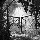 Gates to the River by Pamela Jayne Smith