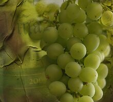 Fruit of the vine by Heather Thorsen