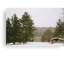 Green Mountain Winter Canvas Print