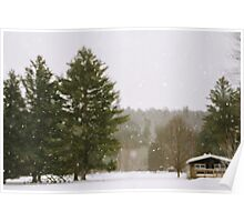 Green Mountain Winter Poster